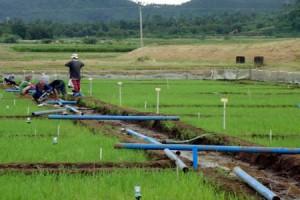 apac-irrigation
