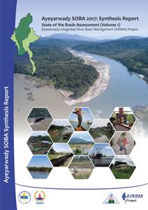 Ayeyarwady SOBA Synthesis Report (Volume 1)